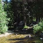 View of our campsite in Annett's Mono Village (Summer)