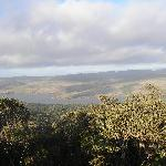 Tomales Bay overlook