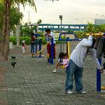 Exercise & Play Area