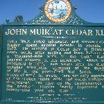 Local Cedar Key & John Muir Info