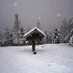 nieve y mas nieve