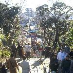 本門頂上から呑川方面を見下ろします。
