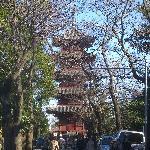 五重塔です。重要文化財です。