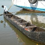 A canoe made from the trunk of a Mangrove tree