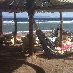 Hammocks by the beach
