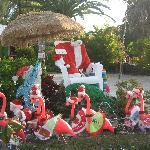 sanibel in december merry christmas