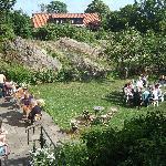 The rocky garden