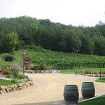 Foto de Wollersheim Winery