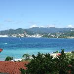 Views over to St George and Grand Anse..