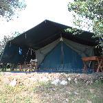 South 2 のテント