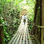 Bridge to lodge