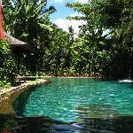 pool (18943903)
