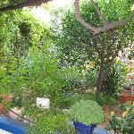 Franceska's Home Foto
