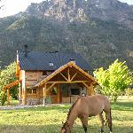 our cabin and one of the friendly horses