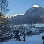 Ski Back to Chalet