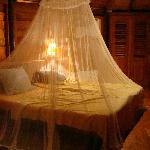 Useful mosquito net!