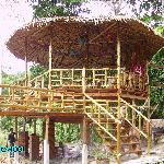 The Treehouse under construction