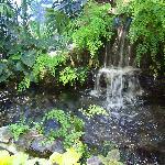 waterfall display