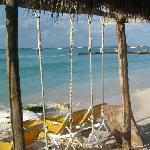 Chi Chi Charlies Playa North