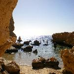 Ras Mohammed - amazing snorkelling & diving
