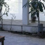 Detalle patio central