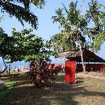 Photo of Varkala Golden Beach Resort
