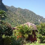 Pavillion in tropischer Gartenanlage