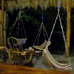 The Famed Hammock-Chair-Thingies