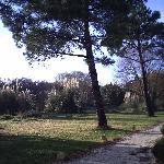 Photo of Hotel Residence Les Alizes