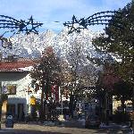 Soll Village