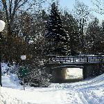 Bridge in Hogs Back Park
