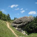 Frog Rock near Casa Verde