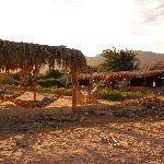 Sababa Camp Tarabin Foto