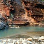 Virgin River Pook