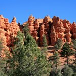 Red Canyon #1