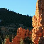 Red Canyon at Sunset #3