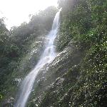 Hiked to this waterfall from Casa Cangrejal (with Omega Tours)