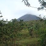 A view of Arenal from our rainforest hike
