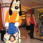 goofy roaming around after park closed