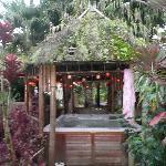 Hottub in the backgarden