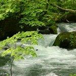 Aliran sungai Oirase