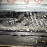 mold in heater