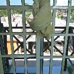 Fenêtre donnant sur le balcon