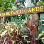 Photo of Botanic Gardens Restaurant Cafe