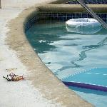 Exposed wires alongside a swimming pool are always reassuring to guests at a quality establishme