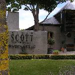 Allan Scott winery - where we had lunch