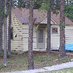 Cabin # 29