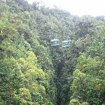 View of Trams from Aerial Footbridge