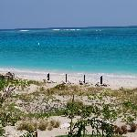 Our daily view of Grace Bay