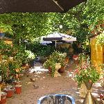 Hotel Goethe's garden